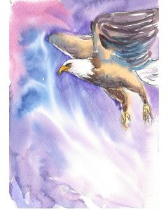 The Eagle in flight - The Predator in the skies