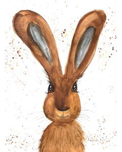 Brown hare nr10