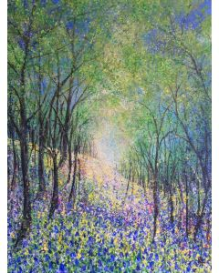 Bluebells and Wild Flora