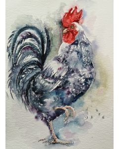 Filo the Rooster