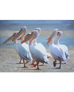 Fishing Time / Pelicans