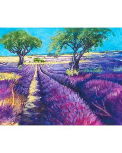 Lavender Fields of France Giclee print