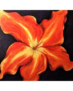 Hibiscus Aflame