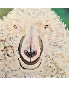 The Large Curly Sheep