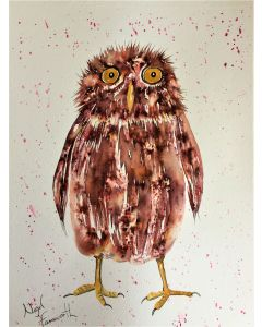 The Puzzled Owl