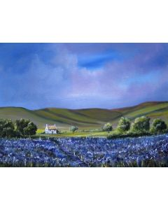 Fields of purple and blue
