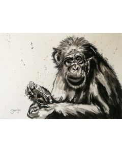 Happy Monkey. Watercolour Chimpanzee Painting. 42cm x 29.7cm. Free Worldwide Shipping.