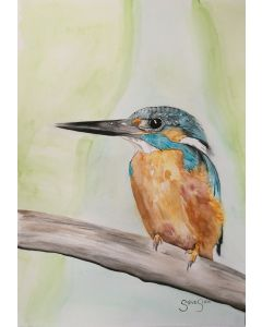 Watercolour Kingfisher Painting