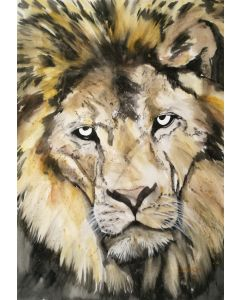 Stately. Watercolour Lion painting on paper. 42cm x 59cm.