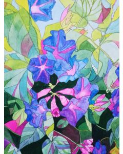 Blue morning glory watercolour painting