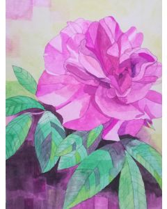 Pink wild rose watercolour painting
