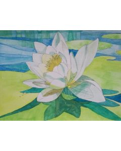 White waterlily on blue pond watercolor painting.