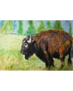 Bison Watercolour. Watercolour Bison Painting on paper. 59.4cm x 42cm. Free Worldwide Shipping.