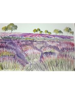soft graphic style lavender field