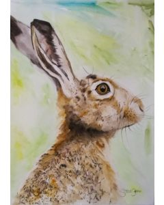 The Hare. Watercolour Hare painting on paper. 29.7cm x 42cm. Free Worldwide Shipping.