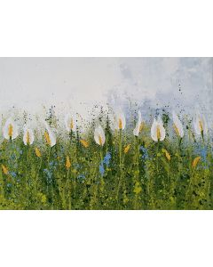 The Lilies Field