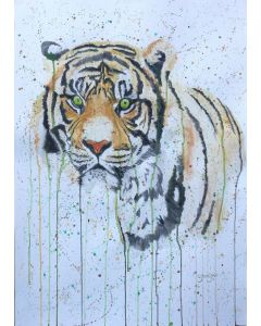 Green Eyed Tiger. A1 sized paper. Free Worldwide Shipping.