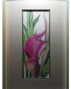 Single Pink Calla lily flower watercolour painting