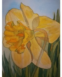 Watercolour depiction of a single daffodil flower.