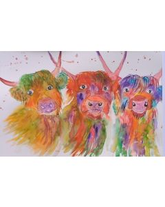 Three Very Colourful Highland Cows
