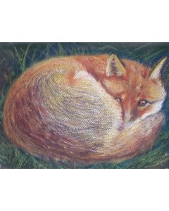 The Fox - Bob sleeping