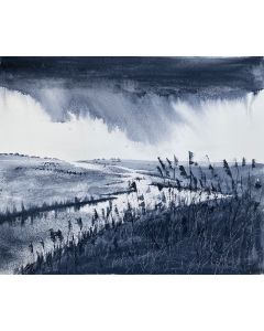 Monochrome - Marshes, Reeds approaching storm clouds