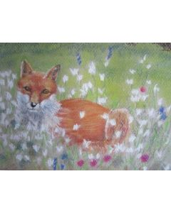 The Fox - Bob amongst the flowers