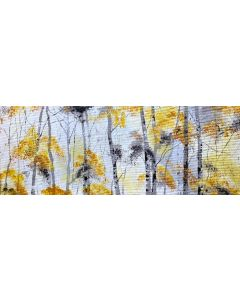 Early Autumn Silver Birches