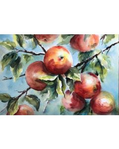 Rosey Red Apples