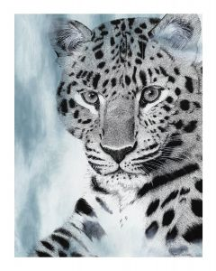 BIG CATS COLLECTION - AMUR LEOPARD