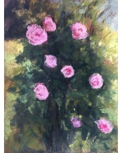 Roses In Bloom Pastel Drawing