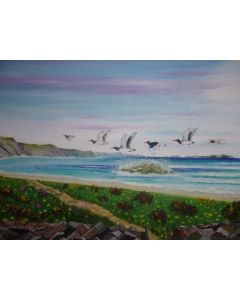 `OYSTER CATCHERS IN FLIGHT`Cornwall coast.