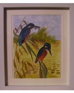 Kingfishers on a branch.