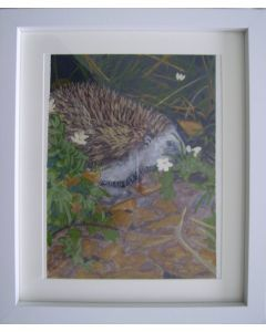 A hedgehog searching for food.
