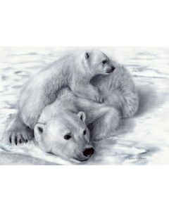 Polar Bears (Limited Edition Giclee Print)