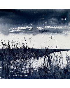 Monochrome - Reeds & Marshes