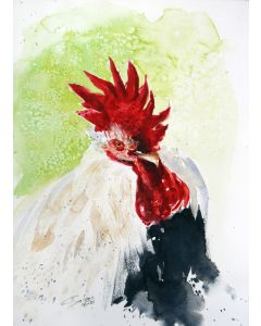 ROOSTER III - PET PORTRAIT