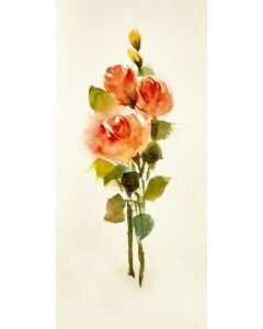 Watercolor Roses Painting Cream-Orange Roses Flowers Small Floral painting-
