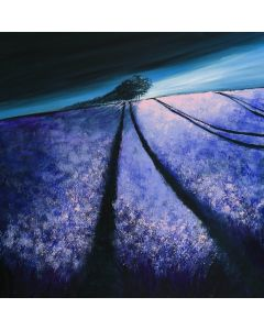 Lavender lines - Fields and Colors Series