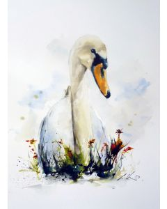 Swan, Sitting Pretty. Original Watercolour Painting.