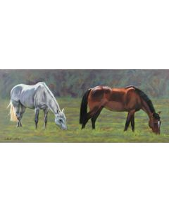 Grey and Bay horses grazing