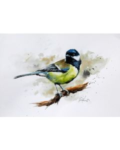 Great Tit, Original Watercolour Painting.