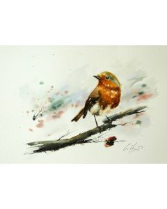 The Robin. Original watercolour painting.