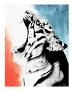 Big Cats Collection - Tiger