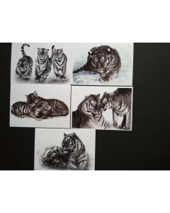 Tiger Painting Greeting Cards set of 5