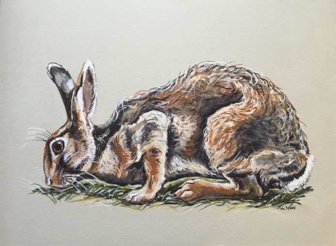 Herb Cropper Hare