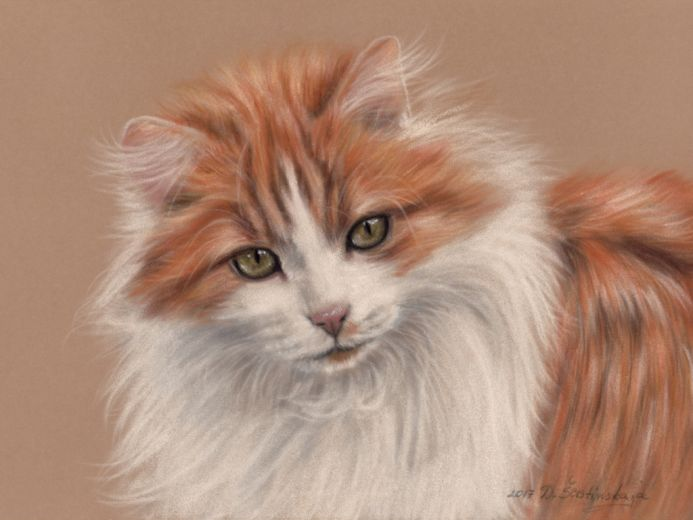 Ginger Cat (Limited Edition Print)