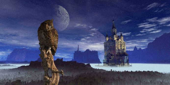 The Owl and the Tower