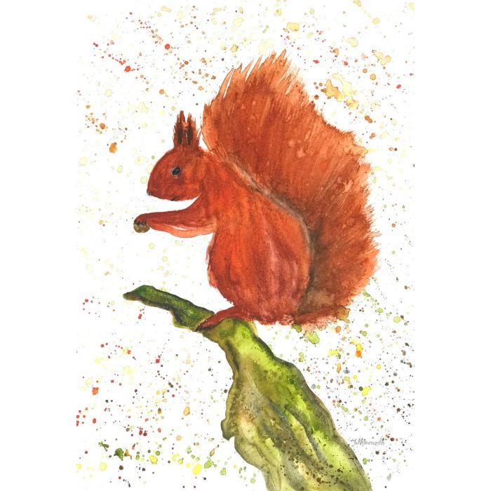 Red squirrel original watercolour painting A4