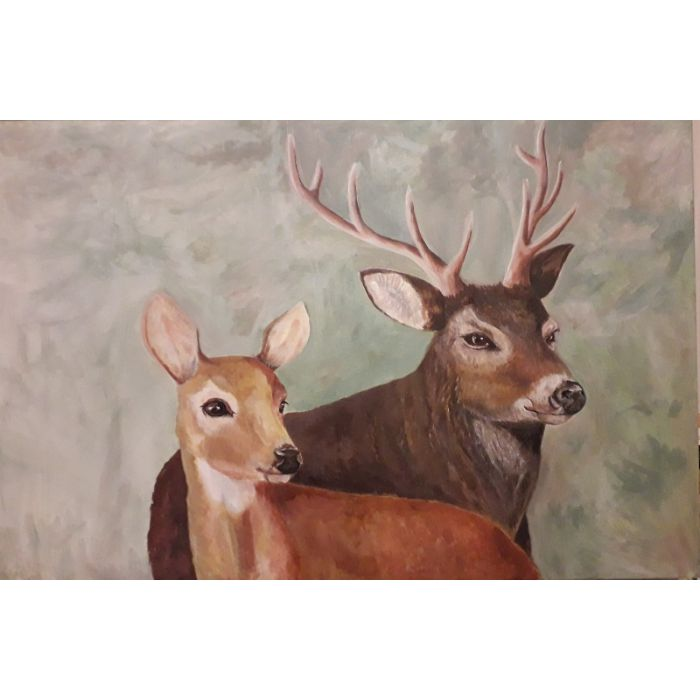 The Interesting View of Deer Two